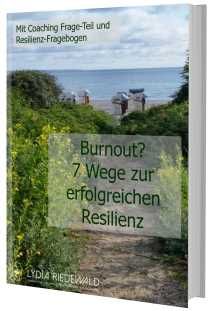 E-Book 3D-Cover